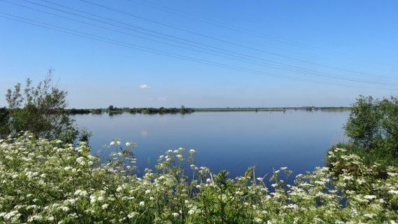 Sfeerbeeld van het Foxholstermeer in de zomer.