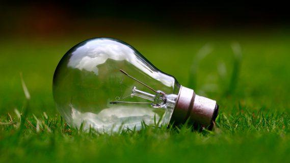 Sfeerfoto van een lamp die op het groene gras ligt.