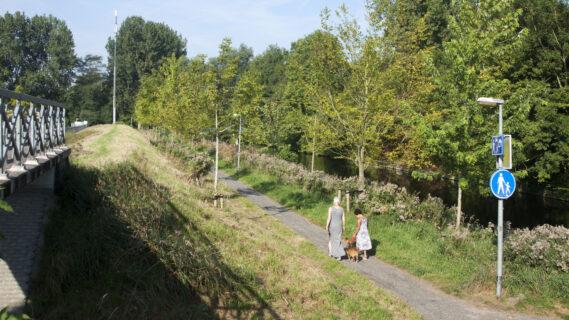 Decoratieve foto van een mevrouw en een kind die samen aan het wandelen zijn met een hond