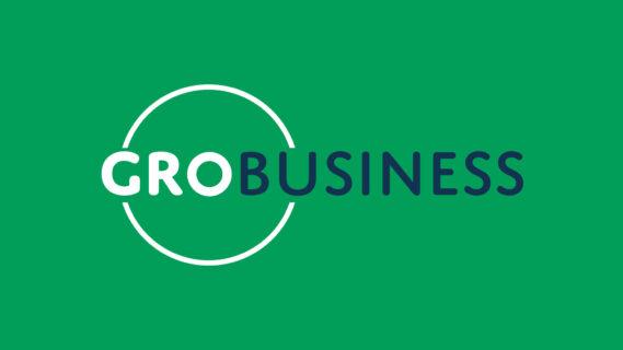 Logo van GroBusiness