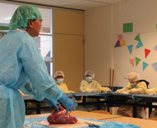 Basisschoolleerlingen krijgen geneeskunde les