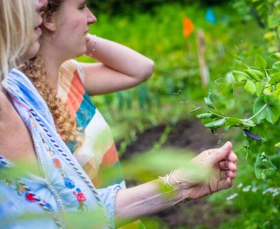 Decoratieve foto van twee vrouwen in een voedseltuin